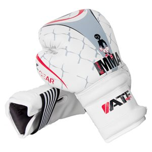 Pair of JR boxing gloves