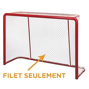 Broomball competition net