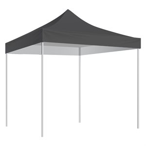 10'x10' shelter, black