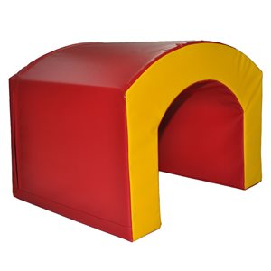 Bridge foam module