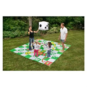 Giant snakes and ladders games