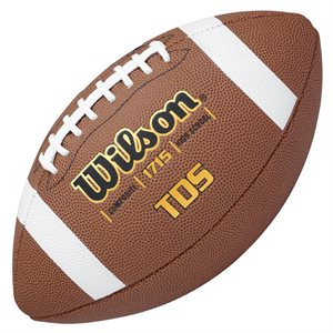 Wilson TDS composite leather football